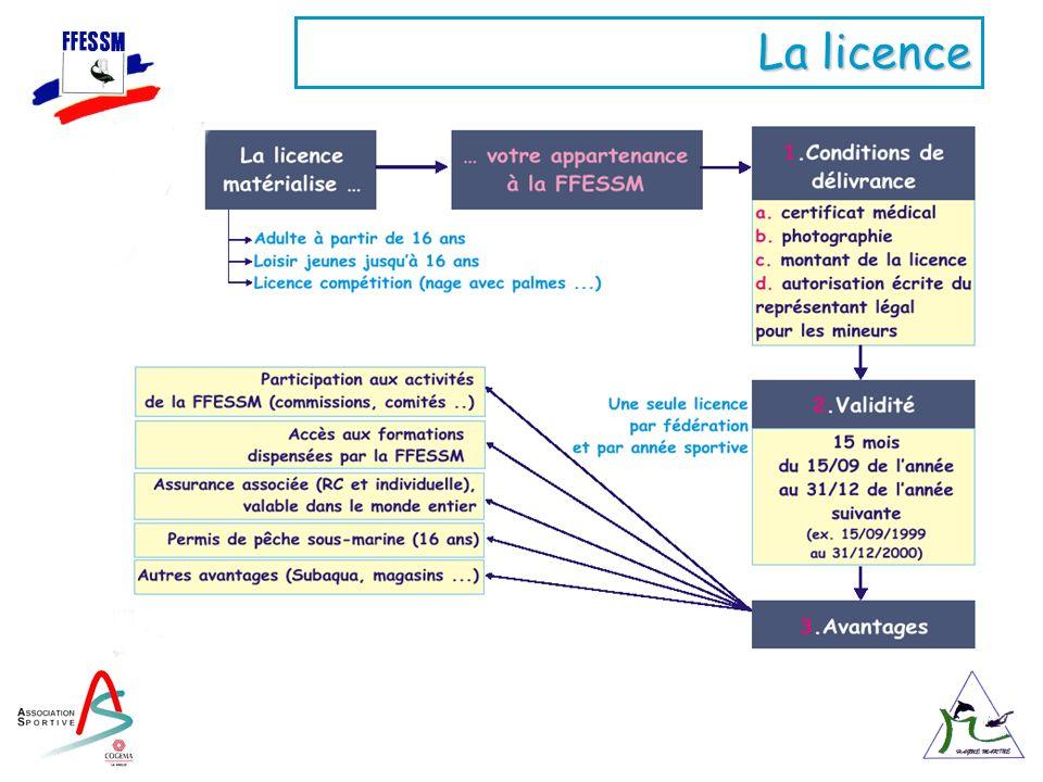 La licence