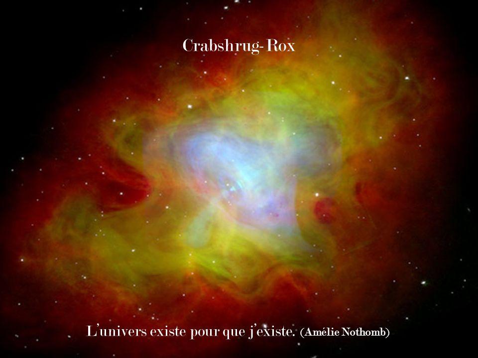 Crabshrug-Rox Lunivers existe pour que jexiste. (Amélie Nothomb)