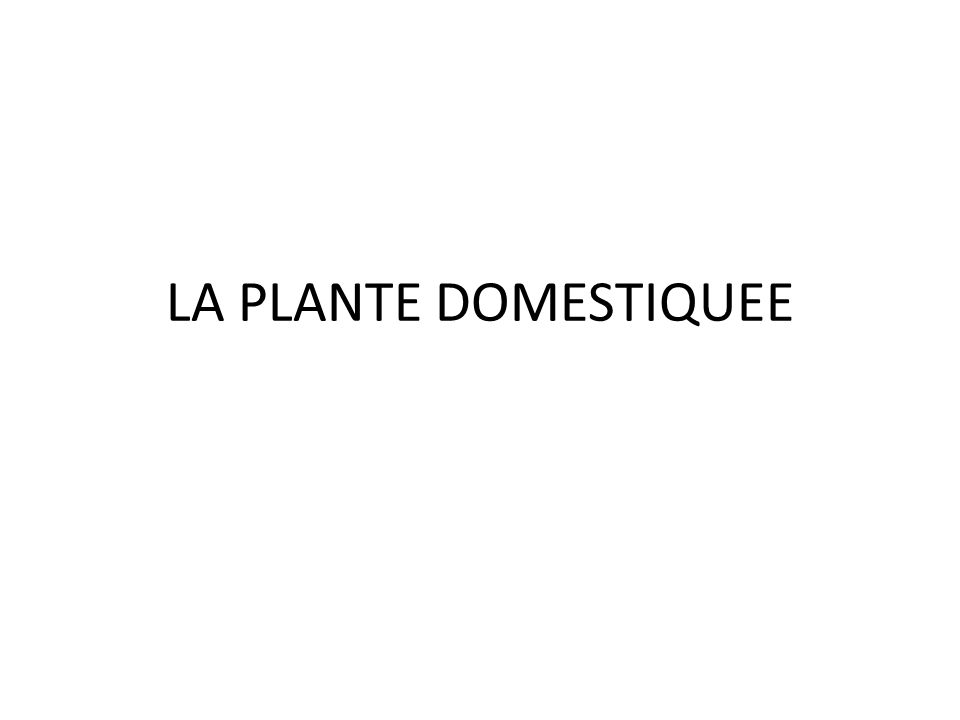 Plantes ressources pour lHomme depuis tjs – Alimentation de lHomme – Alimentation des animaux délevage – Pharmacopée – Habillement – Combustible – Cosmétique – Ornementation – …