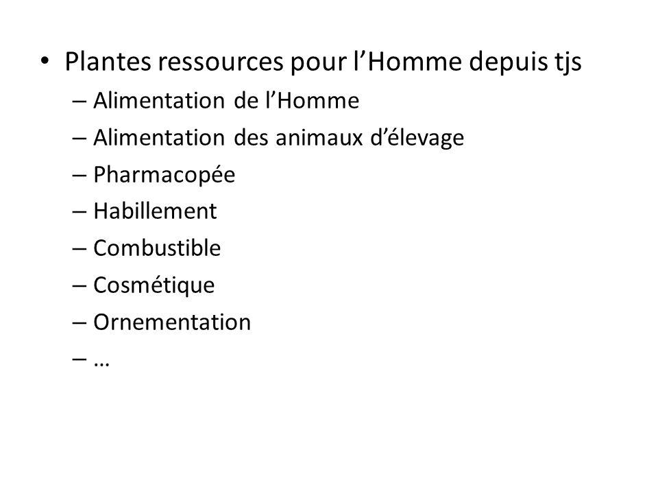 Plantes ressources pour lHomme depuis tjs – Alimentation de lHomme – Alimentation des animaux délevage – Pharmacopée – Habillement – Combustible – Cos