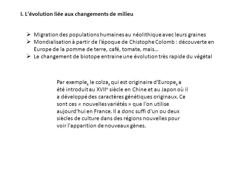 I. L'évolution liée aux changements de milieu Migration des populations humaines au néolithique avec leurs graines Mondialisation à partir de lépoque