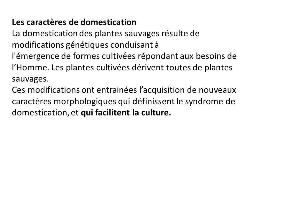 Les caractères de domestication La domestication des plantes sauvages résulte de modifications génétiques conduisant à l'émergence de formes cultivées