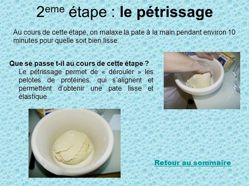 2 eme étape : le pétrissage Au cours de cette étape, on malaxe la pate à la main pendant environ 10 minutes pour quelle soit bien lisse. Que se passe