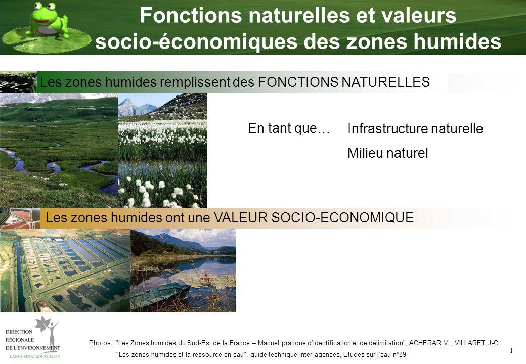 1 Fonctions naturelles et valeurs socio-économiques des zones humides En tant que… Les zones humides ont une VALEUR SOCIO-ECONOMIQUE Infrastructure na