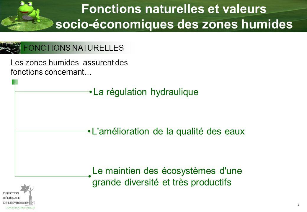 2 Fonctions naturelles et valeurs socio-économiques des zones humides La régulation hydraulique Les zones humides assurent des fonctions concernant… L