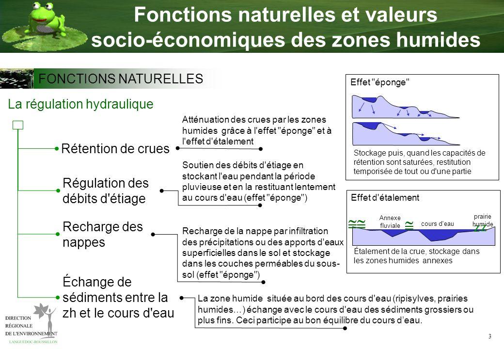 3 Fonctions naturelles et valeurs socio-économiques des zones humides La régulation hydraulique Recharge des nappes Rétention de crues Régulation des