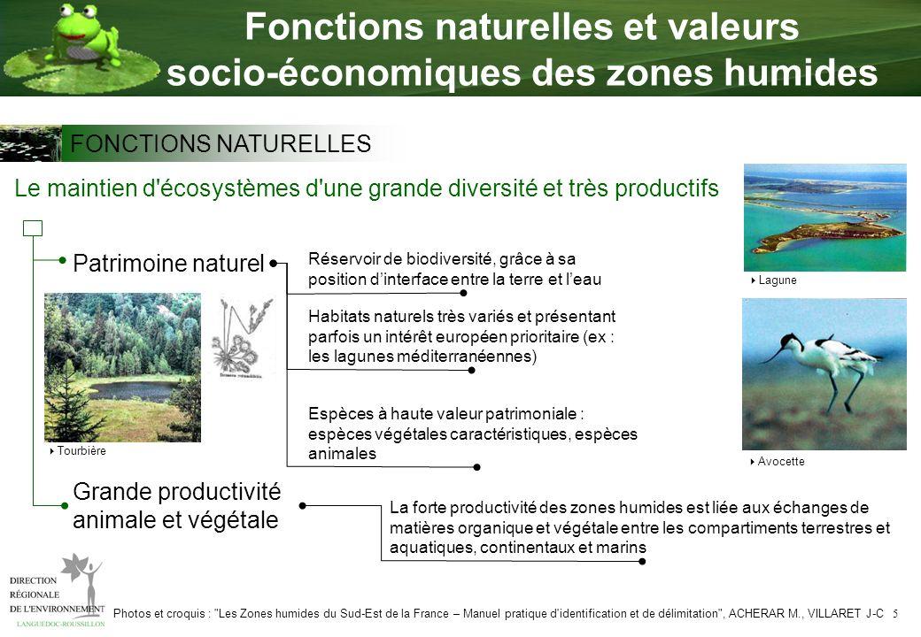 5 Fonctions naturelles et valeurs socio-économiques des zones humides Le maintien d'écosystèmes d'une grande diversité et très productifs Patrimoine n