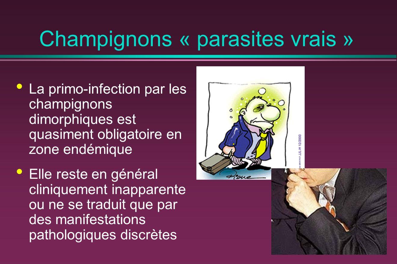 Champignons « parasites vrais » La primo-infection par les champignons dimorphiques est quasiment obligatoire en zone endémique Elle reste en général cliniquement inapparente ou ne se traduit que par des manifestations pathologiques discrètes