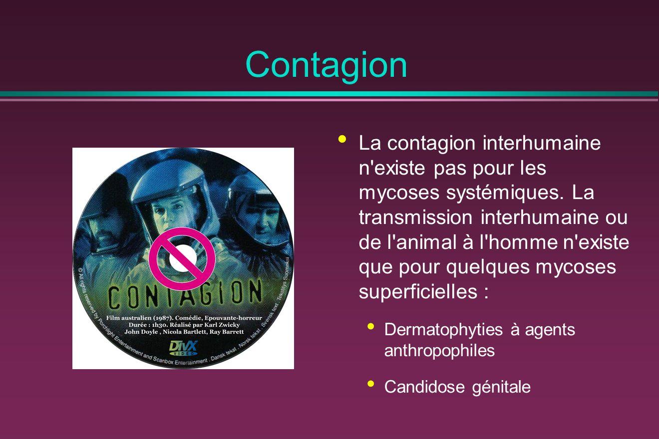 Contagion La contagion interhumaine n existe pas pour les mycoses systémiques.