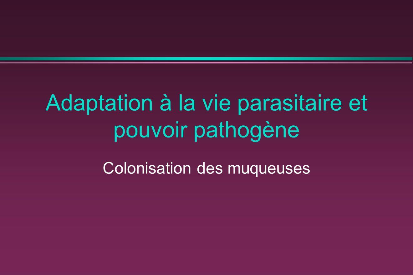Adaptation à la vie parasitaire et pouvoir pathogène Colonisation des muqueuses