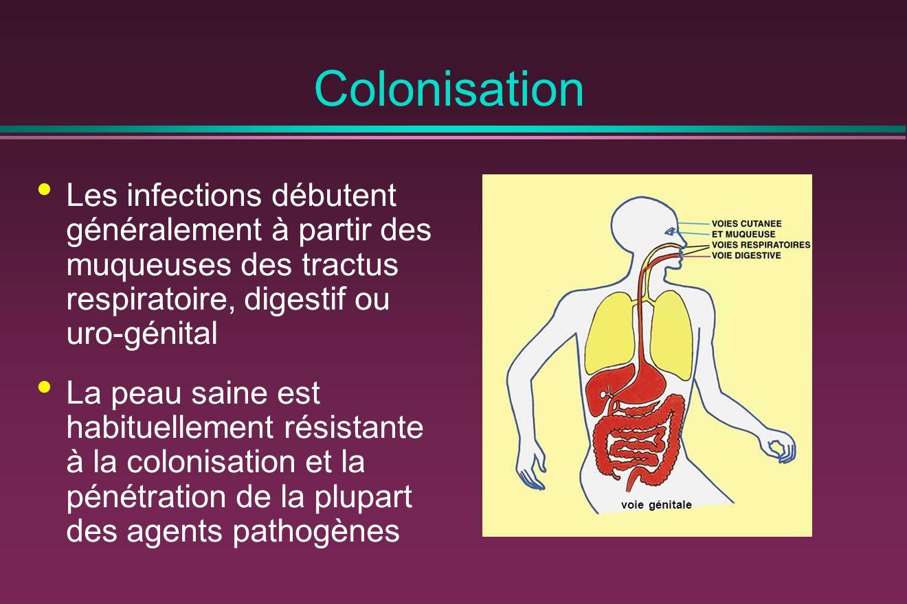 Colonisation Les infections débutent généralement à partir des muqueuses des tractus respiratoire, digestif ou uro-génital La peau saine est habituellement résistante à la colonisation et la pénétration de la plupart des agents pathogènes voie génitale