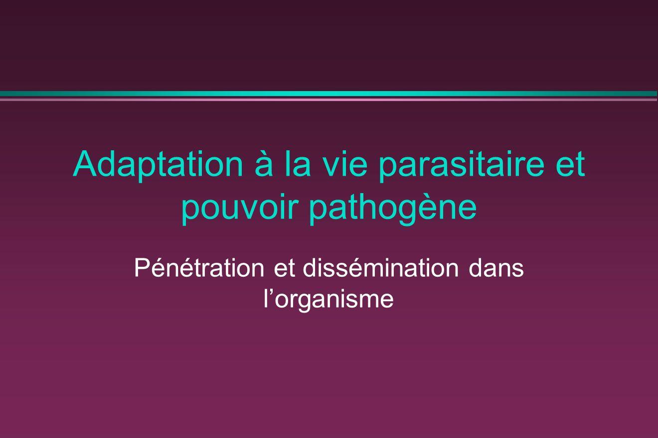 Adaptation à la vie parasitaire et pouvoir pathogène Pénétration et dissémination dans lorganisme