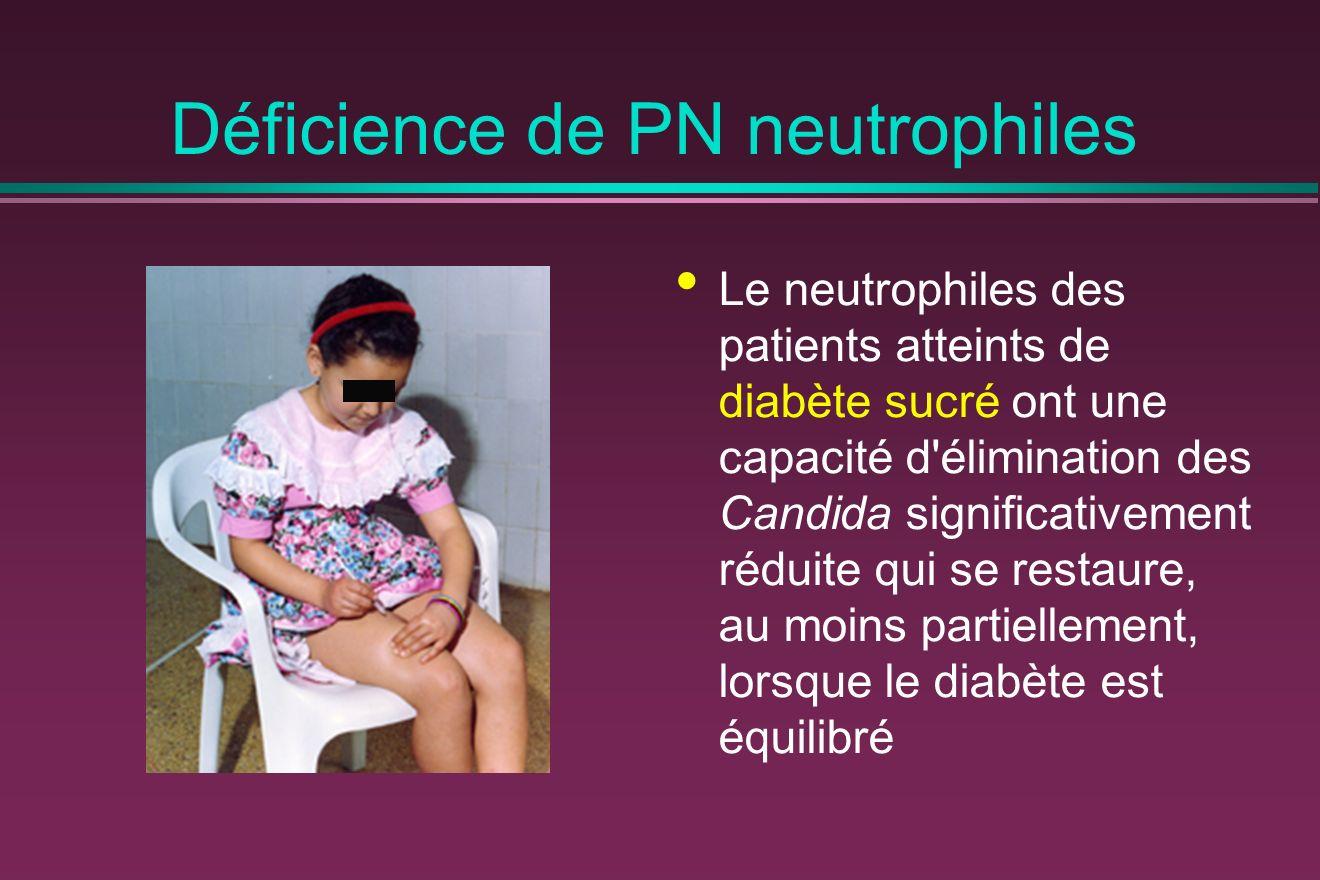 Déficience de PN neutrophiles Le neutrophiles des patients atteints de diabète sucré ont une capacité d élimination des Candida significativement réduite qui se restaure, au moins partiellement, lorsque le diabète est équilibré