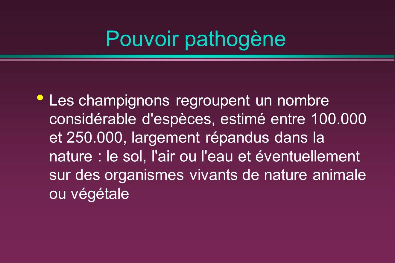 Pouvoir pathogène Les champignons regroupent un nombre considérable d espèces, estimé entre 100.000 et 250.000, largement répandus dans la nature : le sol, l air ou l eau et éventuellement sur des organismes vivants de nature animale ou végétale