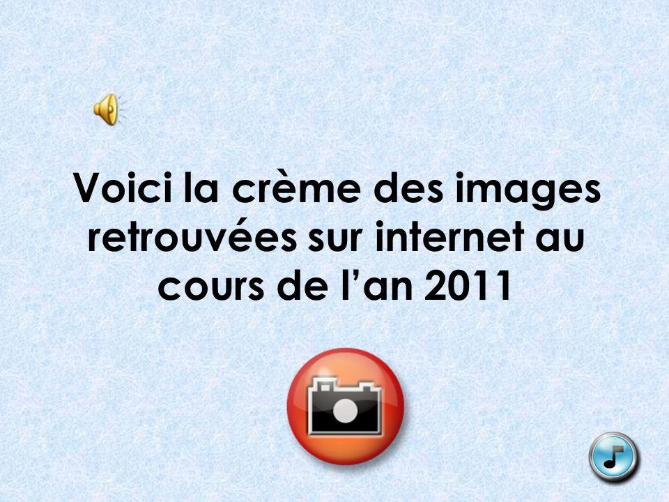 Voici la crème des images retrouvées sur internet au cours de lan 2011