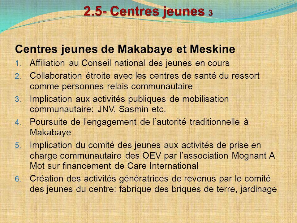 Centres jeunes de Makabaye et Meskine 1. Affiliation au Conseil national des jeunes en cours 2. Collaboration étroite avec les centres de santé du res