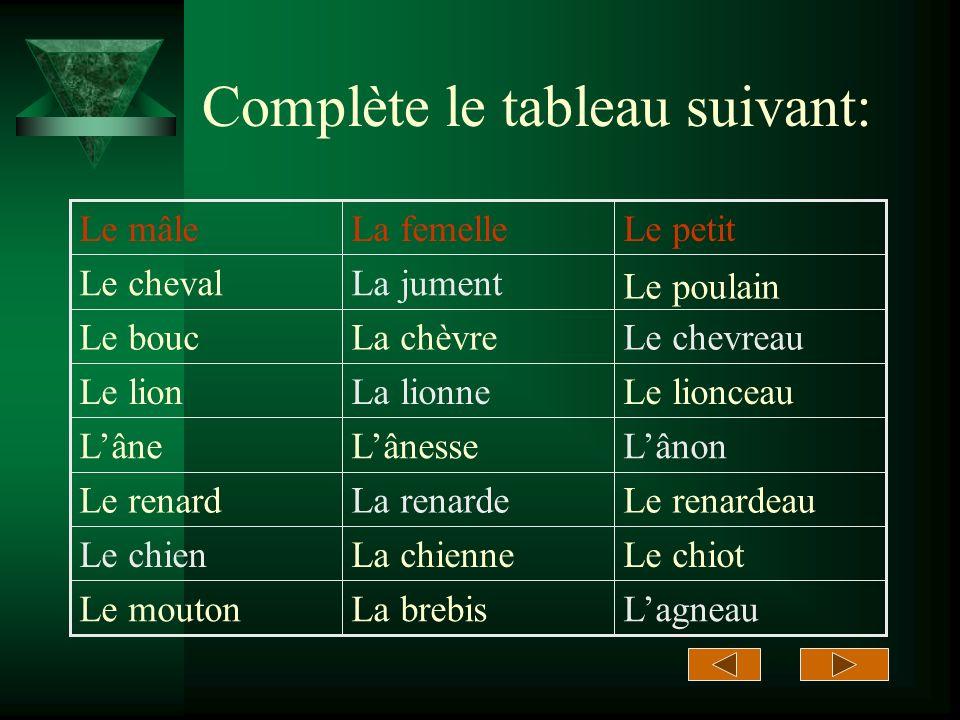 Complétez le tableau suivant La vache Le Chien Le coq Le nom de lanimal Limage de lanimal