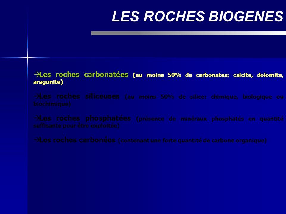 La classification de Dunham LES ROCHES CARBONATEES Avec matrice micritique (boue): - Mudstone: moins de 10% de grains - Wackestone: plus de 10% de grains, mais éléments non jointifs - Packstone: éléments jointifs