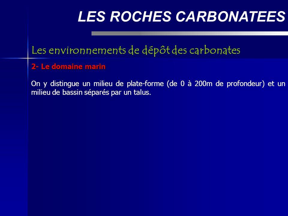 LES ROCHES CARBONATEES 2- Le domaine marin On y distingue un milieu de plate-forme (de 0 à 200m de profondeur) et un milieu de bassin séparés par un talus.