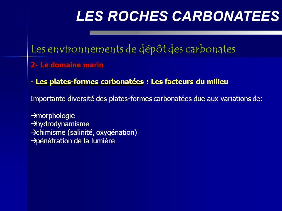 LES ROCHES CARBONATEES 2- Le domaine marin - Les plates-formes carbonatées : Les facteurs du milieu Importante diversité des plates-formes carbonatées due aux variations de: morphologie hydrodynamisme chimisme (salinité, oxygénation) pénétration de la lumière Les environnements de dépôt des carbonates