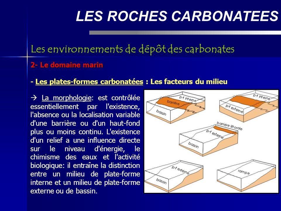 LES ROCHES CARBONATEES 2- Le domaine marin - Les plates-formes carbonatées : Les facteurs du milieu Les environnements de dépôt des carbonates La morphologie: est contrôlée essentiellement par l existence, l absence ou la localisation variable d une barrière ou d un haut-fond plus ou moins continu.