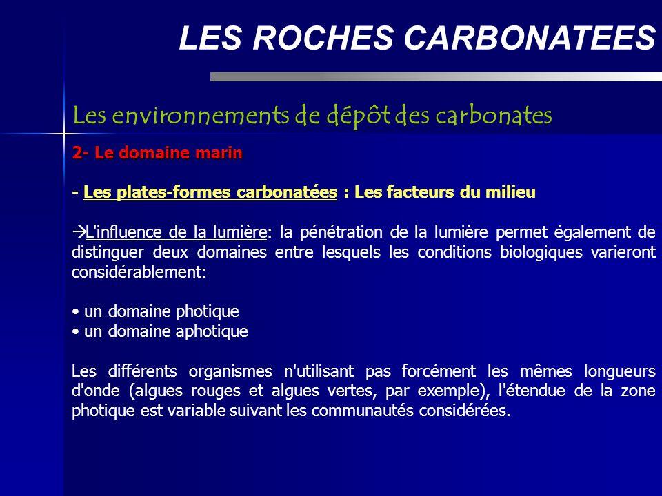 LES ROCHES CARBONATEES 2- Le domaine marin - Les plates-formes carbonatées : Les facteurs du milieu L influence de la lumière: la pénétration de la lumière permet également de distinguer deux domaines entre lesquels les conditions biologiques varieront considérablement: un domaine photique un domaine aphotique Les différents organismes n utilisant pas forcément les mêmes longueurs d onde (algues rouges et algues vertes, par exemple), l étendue de la zone photique est variable suivant les communautés considérées.