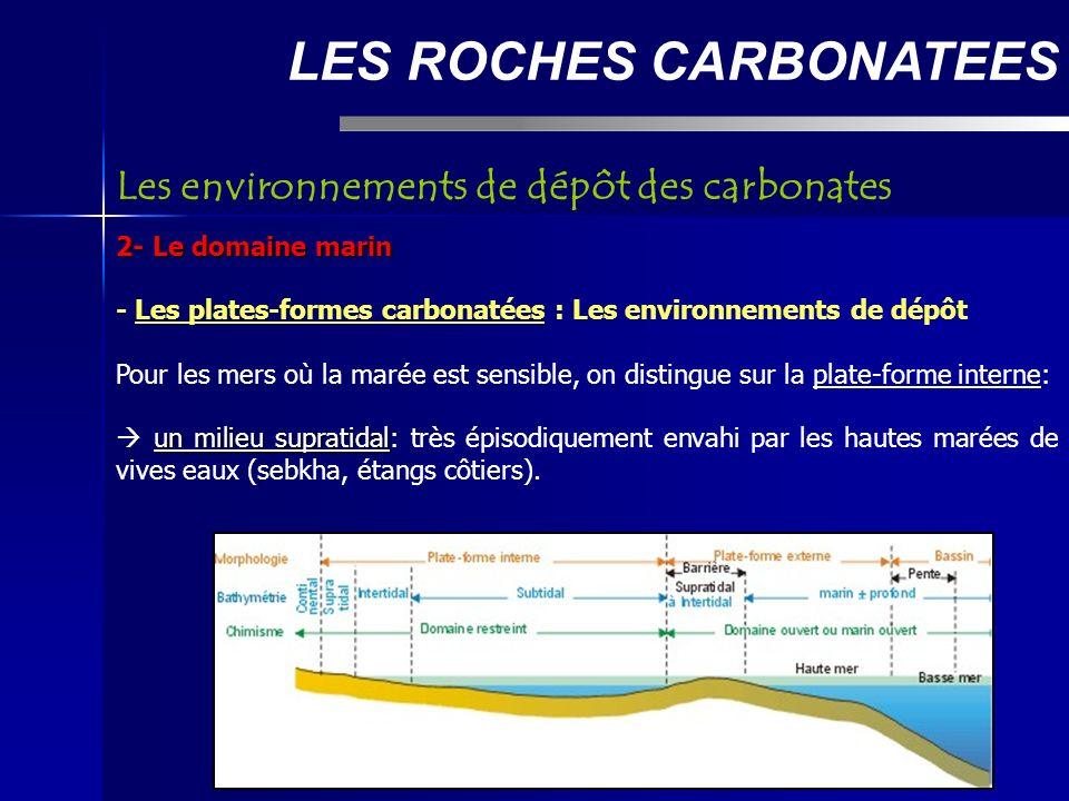 LES ROCHES CARBONATEES 2- Le domaine marin - Les plates-formes carbonatées : Les environnements de dépôt Pour les mers où la marée est sensible, on distingue sur la plate-forme interne: un milieu supratidal un milieu supratidal: très épisodiquement envahi par les hautes marées de vives eaux (sebkha, étangs côtiers).