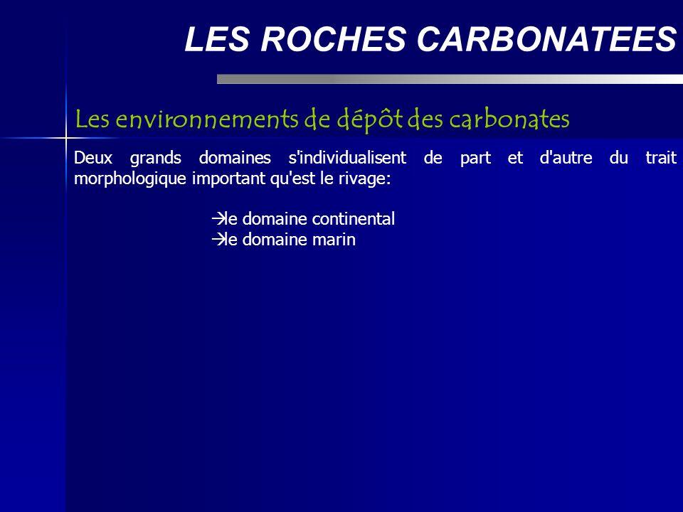 LES ROCHES CARBONATEES Les environnements de dépôt des carbonates Deux grands domaines s individualisent de part et d autre du trait morphologique important qu est le rivage: le domaine continental le domaine marin