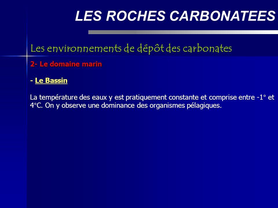 LES ROCHES CARBONATEES 2- Le domaine marin - Le Bassin La température des eaux y est pratiquement constante et comprise entre -1° et 4°C.