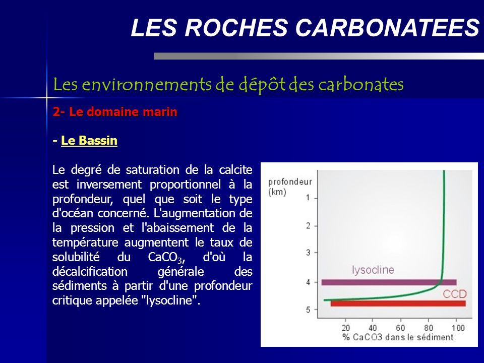 LES ROCHES CARBONATEES 2- Le domaine marin - Le Bassin Le degré de saturation de la calcite est inversement proportionnel à la profondeur, quel que soit le type d océan concerné.