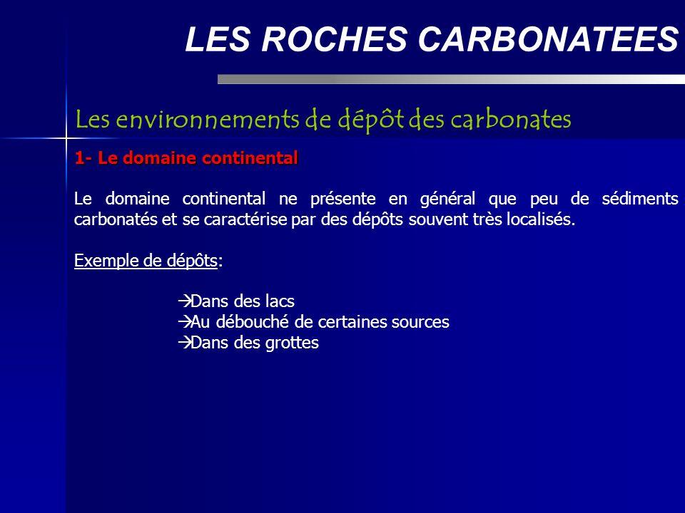 La classification de Dunham LES ROCHES CARBONATEES Boundstones (constructions récifales): - Bafflestone: organismes érigés piégeant le sédiment en suspension par ralentissement de l écoulement du fluide transporteur - Bindstone: organismes stabilisant le substrat par encroûtement (algues corallines) - Framestone: organismes édifiant une charpente rigide (coraux constructeurs actuels)