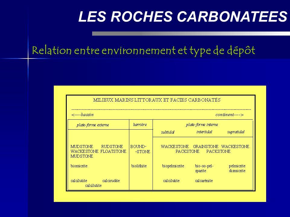 LES ROCHES CARBONATEES Relation entre environnement et type de dépôt
