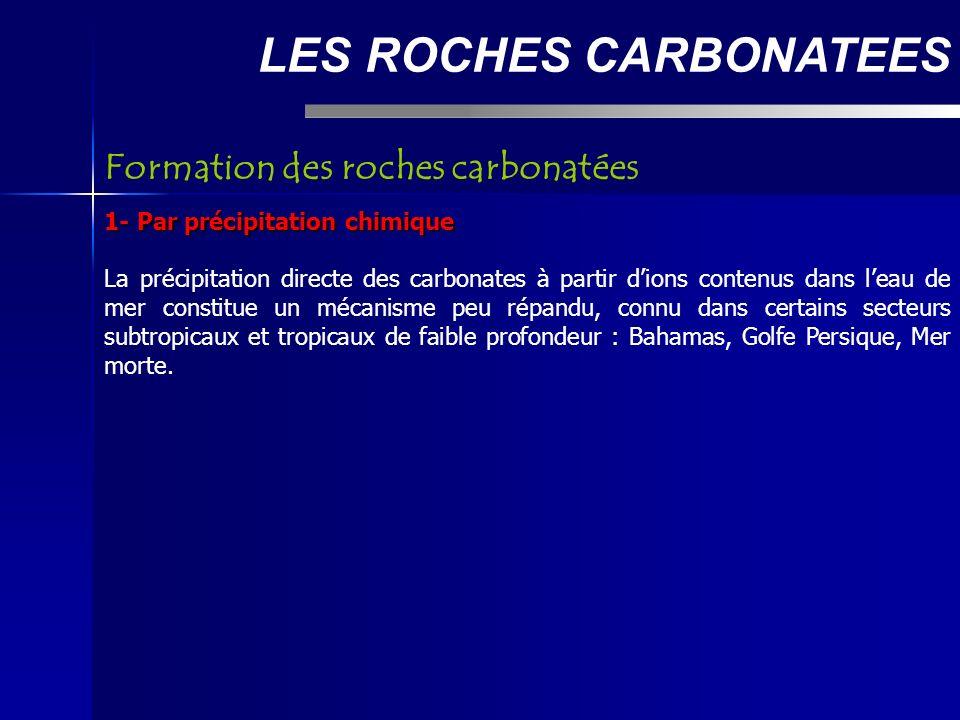 LES ROCHES CARBONATEES 1- Par précipitation chimique La précipitation directe des carbonates à partir dions contenus dans leau de mer constitue un mécanisme peu répandu, connu dans certains secteurs subtropicaux et tropicaux de faible profondeur : Bahamas, Golfe Persique, Mer morte.