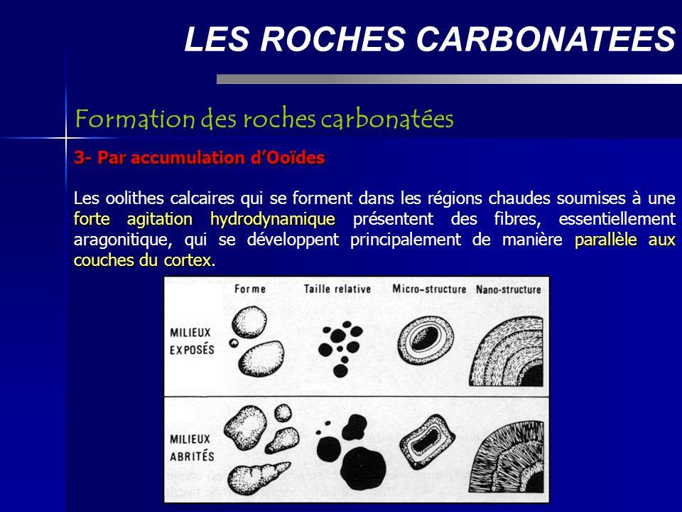 LES ROCHES CARBONATEES 3- Par accumulation dOoïdes forte agitation hydrodynamique parallèle aux couches du cortex Les oolithes calcaires qui se forment dans les régions chaudes soumises à une forte agitation hydrodynamique présentent des fibres, essentiellement aragonitique, qui se développent principalement de manière parallèle aux couches du cortex.