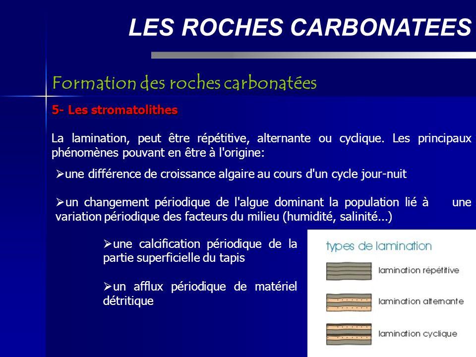 LES ROCHES CARBONATEES 5- Les stromatolithes La lamination, peut être répétitive, alternante ou cyclique.