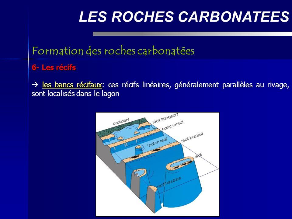 LES ROCHES CARBONATEES 6- Les récifs les bancs récifaux les bancs récifaux: ces récifs linéaires, généralement parallèles au rivage, sont localisés dans le lagon Formation des roches carbonatées