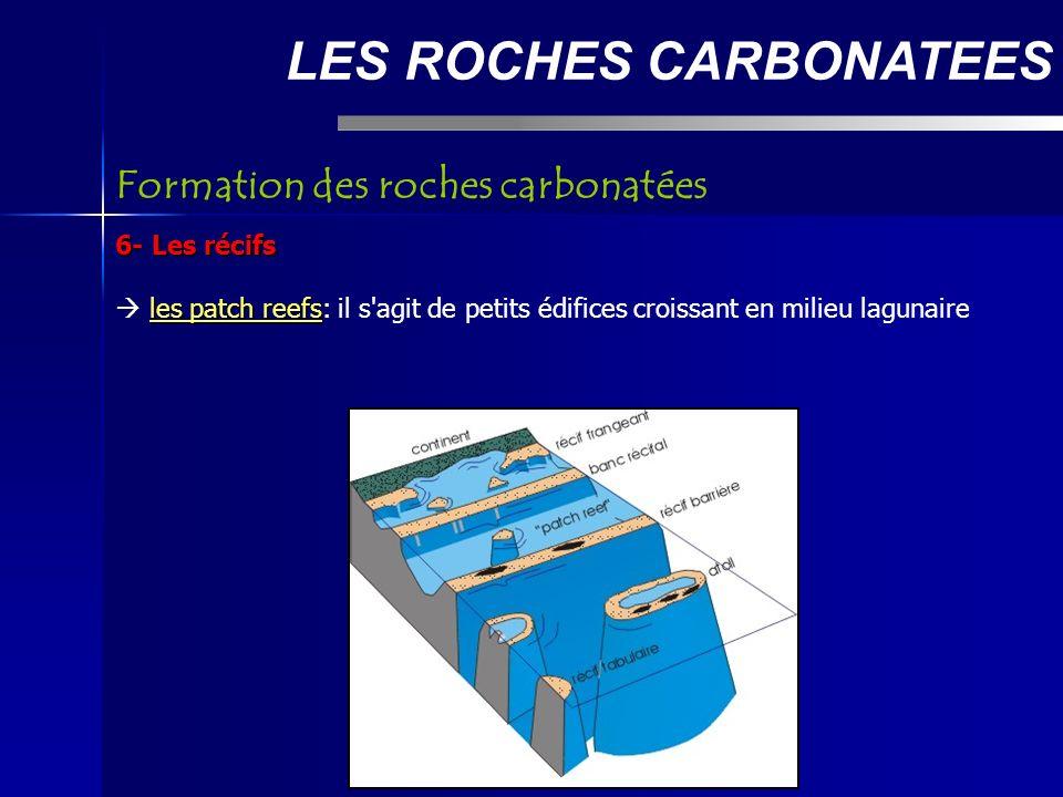 LES ROCHES CARBONATEES 6- Les récifs les patch reefs les patch reefs: il s agit de petits édifices croissant en milieu lagunaire Formation des roches carbonatées