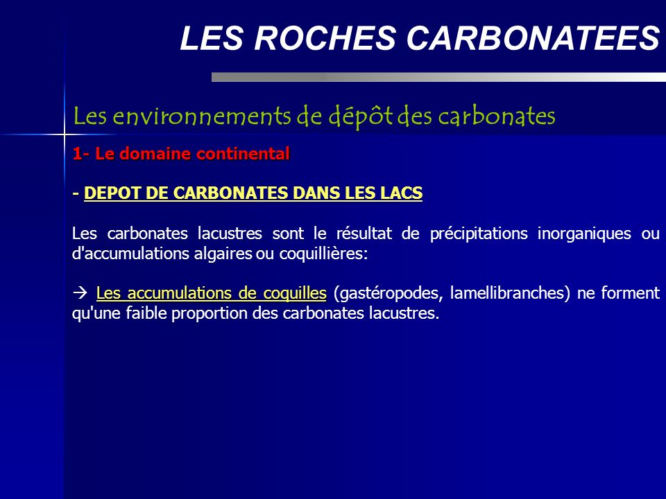LES ROCHES CARBONATEES 1- Le domaine continental - DEPOT DE CARBONATES AU DEBOUCHE DE CERTAINES SOURCE Aux émergences de certaines sources, ou plus rarement en rivière, se forment des précipitations de calcite.
