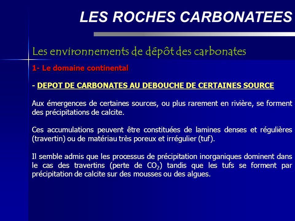 LES ROCHES CARBONATEES 2- Le domaine marin - Les plates-formes carbonatées : Les environnements de dépôt L action des facteurs du milieu est à l origine de la différentiation des environnements au sein des plates-formes.