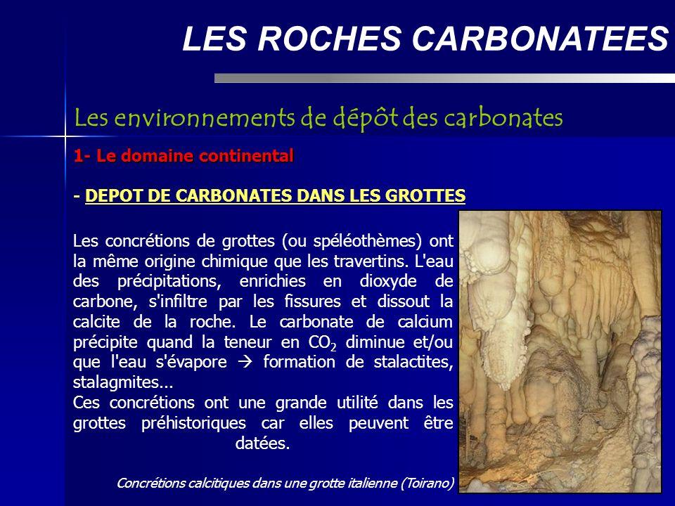 LES ROCHES CARBONATEES 1- Le domaine continental - DEPOT DE CARBONATES DANS LES GROTTES Les environnements de dépôt des carbonates Les concrétions de grottes (ou spéléothèmes) ont la même origine chimique que les travertins.