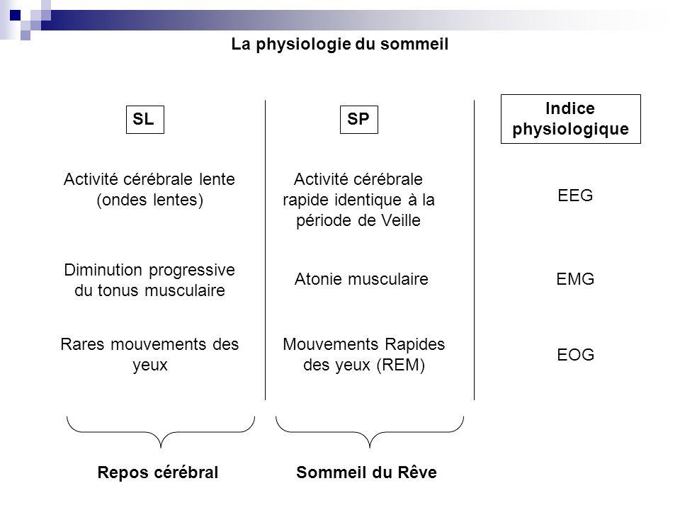 La physiologie du sommeil SLSP Indice physiologique Activité cérébrale lente (ondes lentes) Activité cérébrale rapide identique à la période de Veille