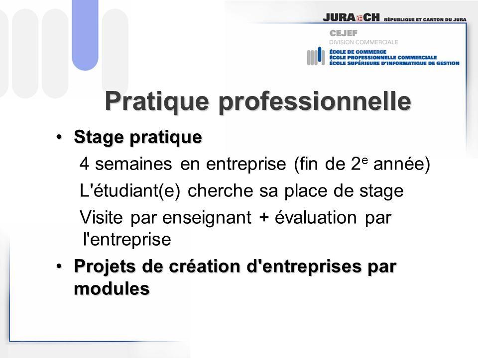 Pratique professionnelle Stage pratiqueStage pratique 4 semaines en entreprise (fin de 2 e année) L'étudiant(e) cherche sa place de stage Visite par e