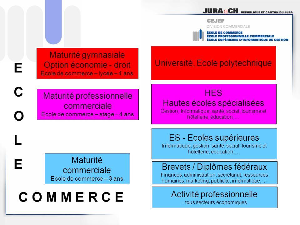 Maturité commerciale Ecole de commerce – 3 ans Activité professionnelle - tous secteurs économiques Brevets / Diplômes fédéraux Finances, administrati