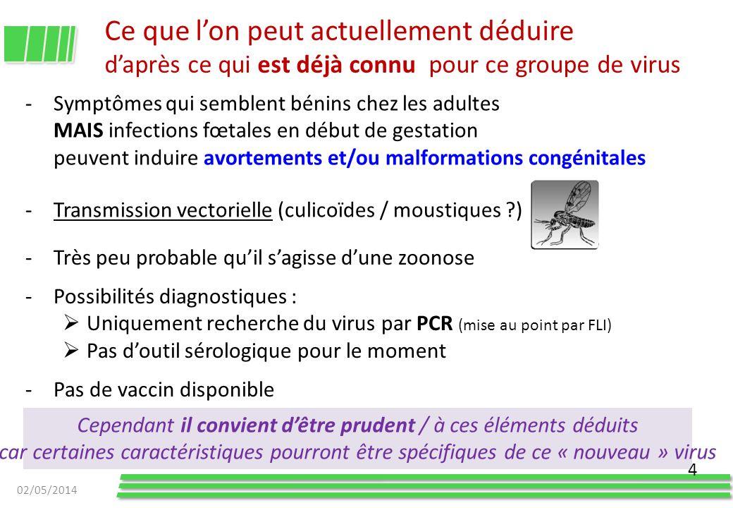Ce que lon peut actuellement déduire daprès ce qui est déjà connu pour ce groupe de virus -Symptômes qui semblent bénins chez les adultes MAIS infecti