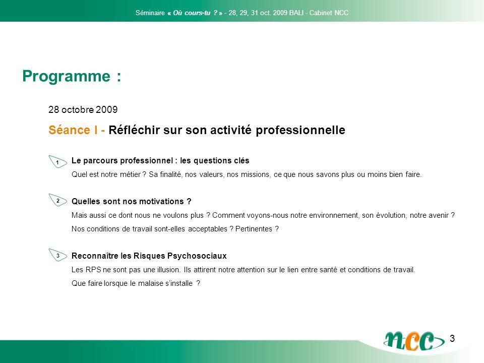 3 28 octobre 2009 Séance I - Réfléchir sur son activité professionnelle Le parcours professionnel : les questions clés Quel est notre métier ? Sa fina