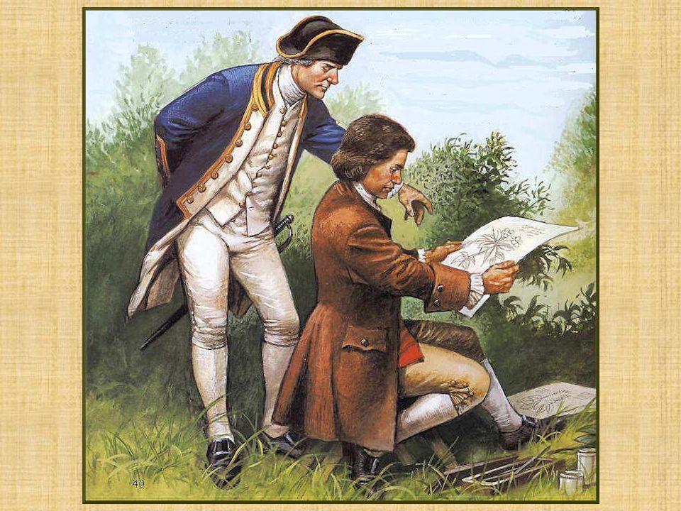 Le britannique James Cook (1728-1779) fut lun des premiers explorateurs scientifiques; il était accompagné de naturalistes, de chercheurs et dartistes chargés de rapporter des échantillons et des descriptions de tout ce quils découvraient.