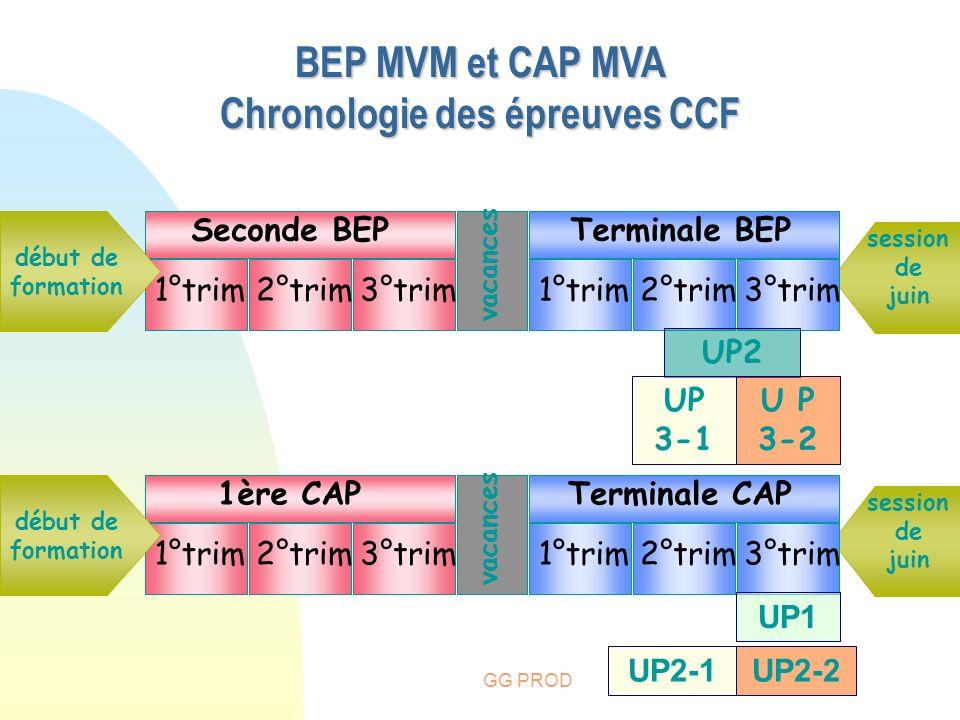 GG PROD BEP MVM et CAP MVA Chronologie des épreuves CCF vacances session de juin début de formation Seconde BEPTerminale BEP 3°trim1°trim2°trim1°trim2