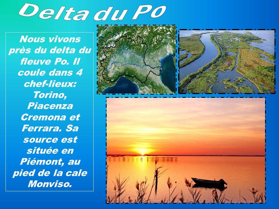 Nous vivons près du delta du fleuve Po. Il coule dans 4 chef-lieux: Torino, Piacenza Cremona et Ferrara. Sa source est située en Piémont, au pied de l