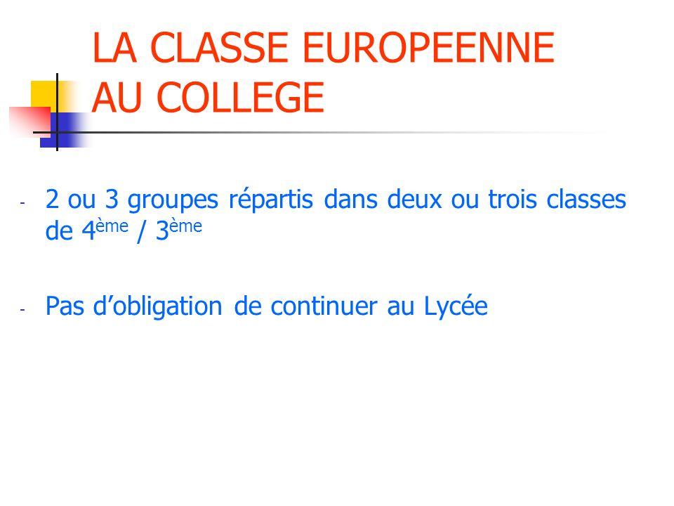 LA CLASSE EURO AU LYCEE - 1h par semaine + 1h dune matière enseignée en anglais en 2 nde ( DNL )
