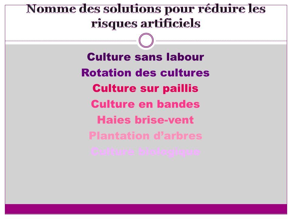 Culture sans labour Rotation des cultures Culture sur paillis Culture en bandes Haies brise-vent Plantation darbres Culture biologique
